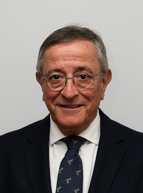 Julio Domínguez L.